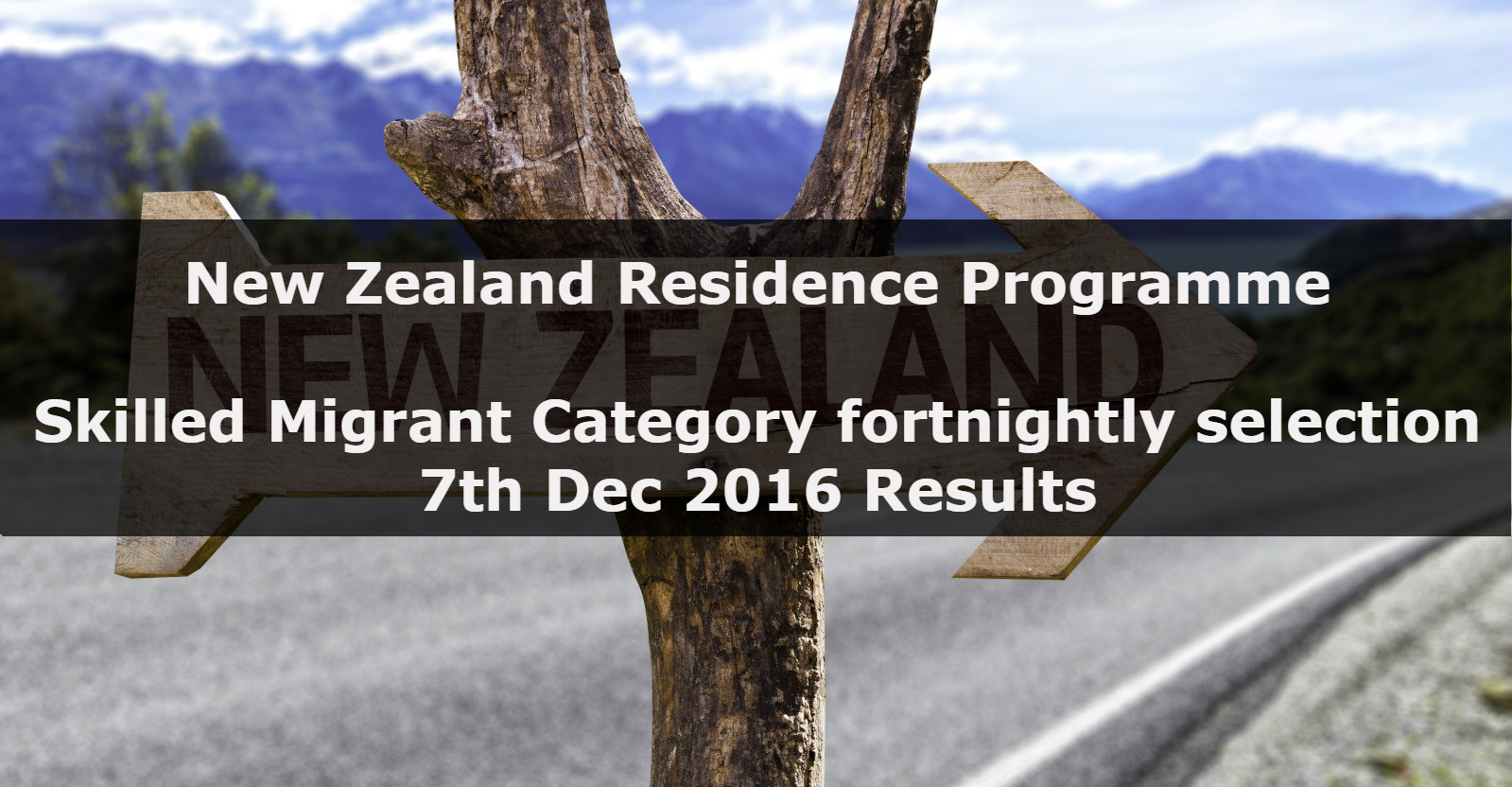 new zealand residence programme 7th dec 2016 results