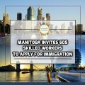 manitoba invites 605 skilled workers
